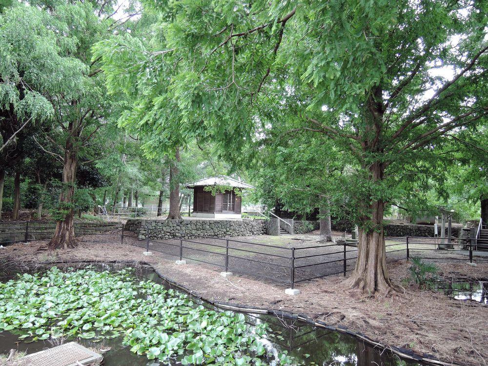 中新田稲荷神社|全景