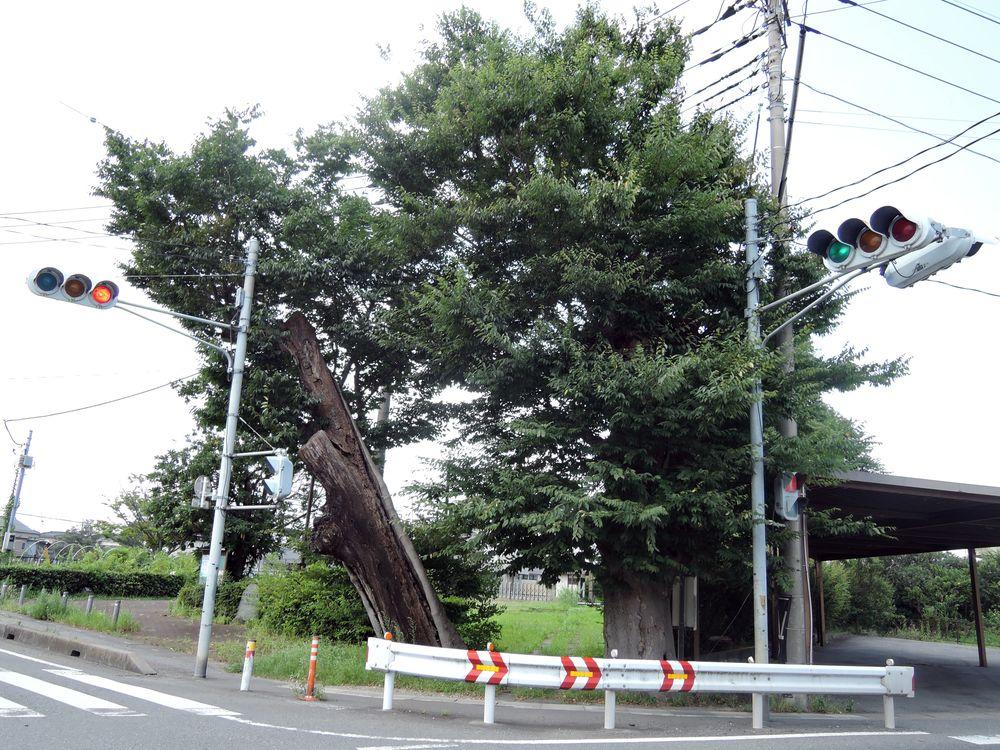 大吉香取神社跡地