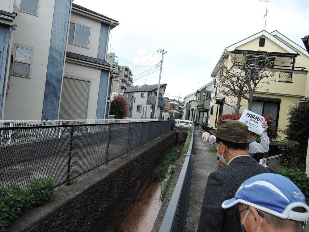 古綾瀬川沿いを歩く-2