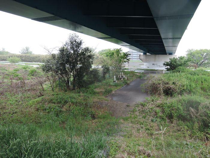 吉越橋の真下