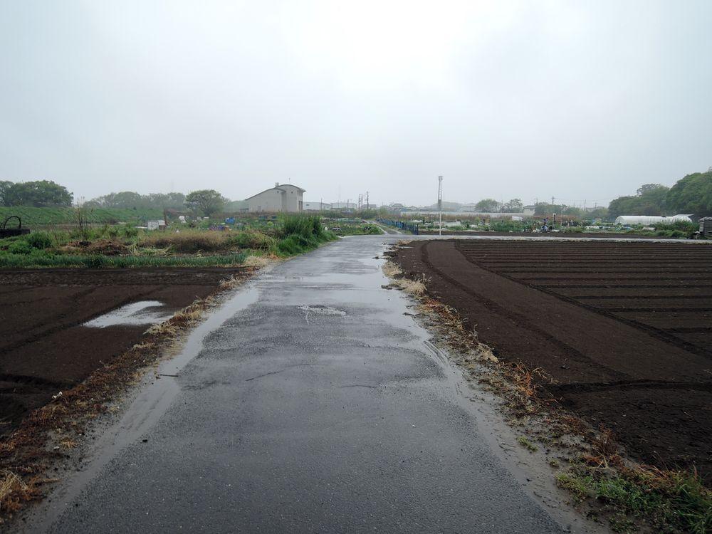 下妻街道(江戸往来)跡
