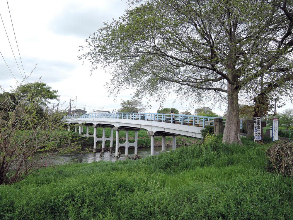 大野島越谷線から〆切橋を右手に望む。