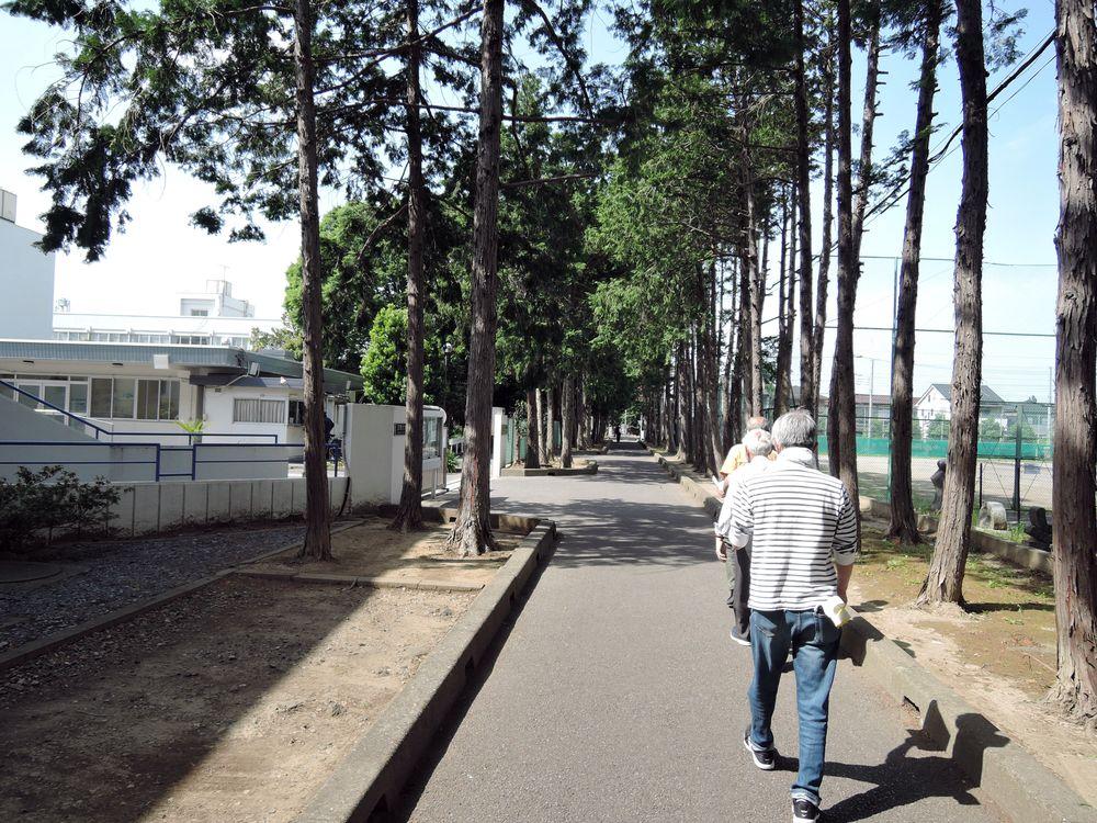五社稲荷神社参道